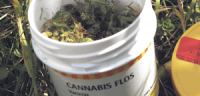 Cannabis aus der Apotheke
