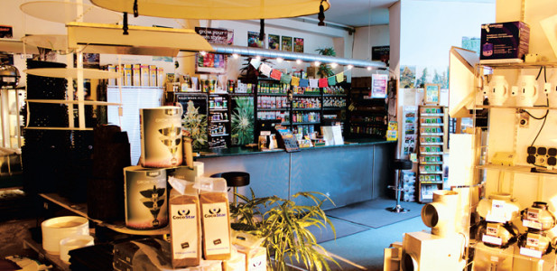 grasgruen-gras-grün-gras-gruen-berlin-growshop-headshop-smartshop-growing-laden-berlin-geschäft-handel