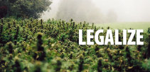 Outdoor_legalize