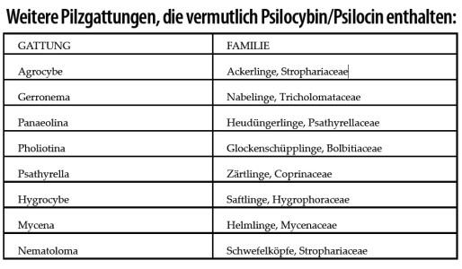 Weitere-Pilzgattungen-Psilocybe-Pilze-Zauberpilze-Tabelle-Übersicht