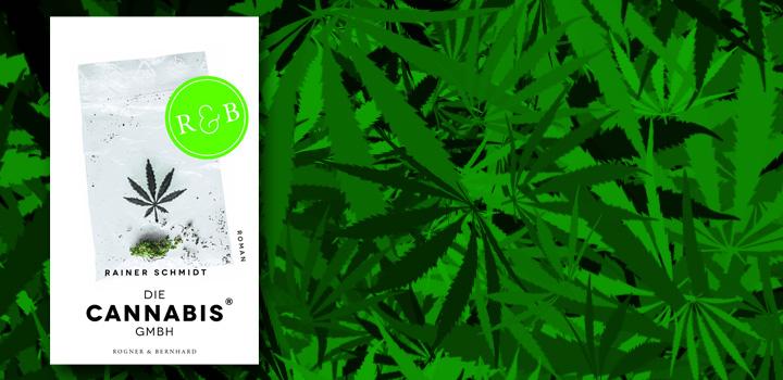 cannabis-gmbh-buch-buchvorstellung-rainer-schmidt (1)