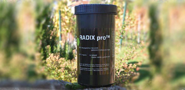 radixPro