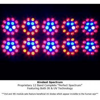 Kind-LED-K3-L600-6-600x600