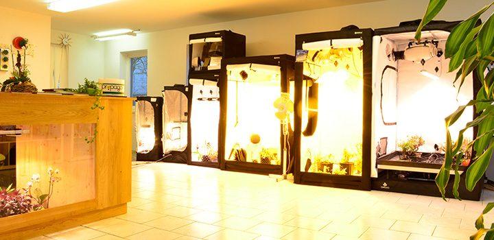 propago-shop-boxen-licht