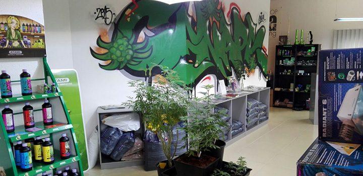 canapa-grow-head-steiermark-growshop-headshop-österreich