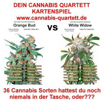 Dein-Cannabis-Quartett-Kartenspiel