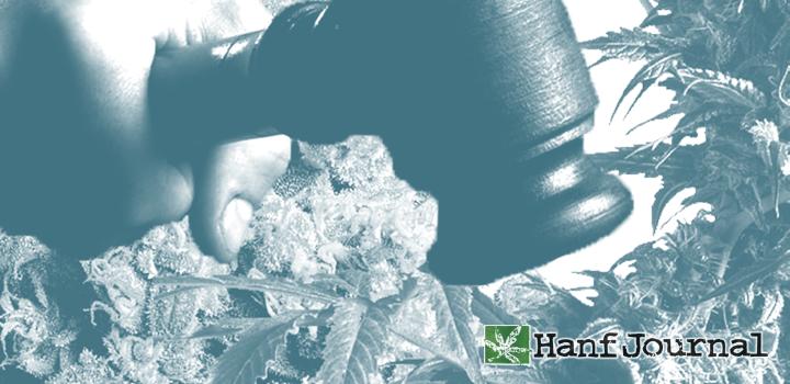 recht-cannabis-patienten-gericht-urteil-franjo213