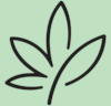 Hanfzart – Kosmetik und Pflegeprodukte