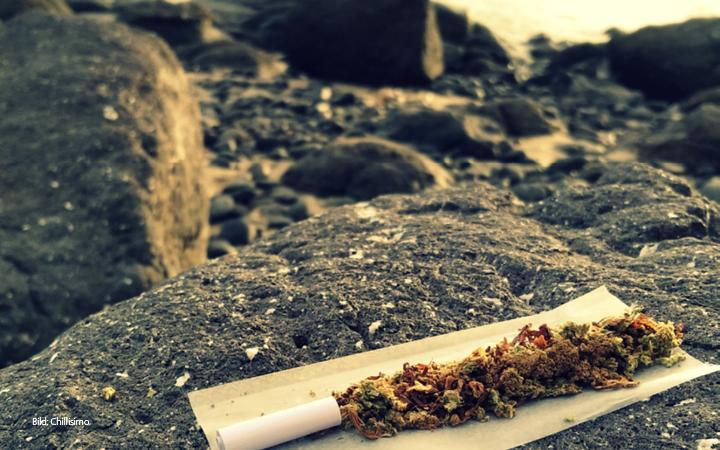 Natürlich spielt auch das Thema Cannabis eine große Rolle