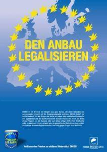 In ganz Europa entstehen Initiativen für Cannabis Social Clubs Grafik: ENCOD